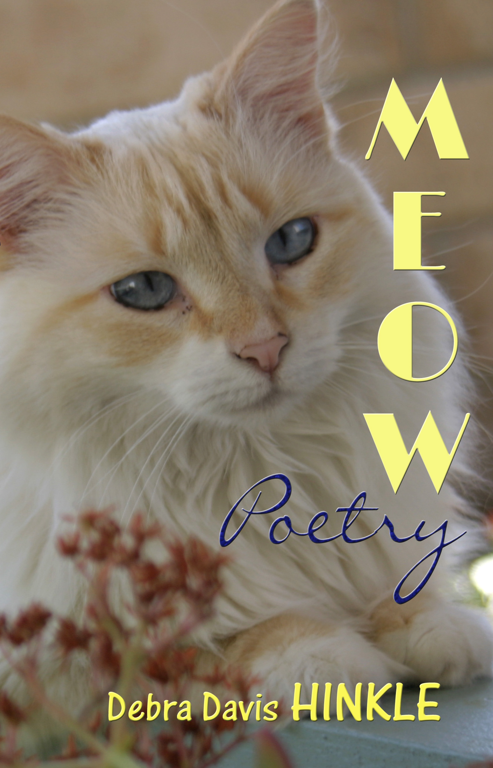 Meow Poetry 1